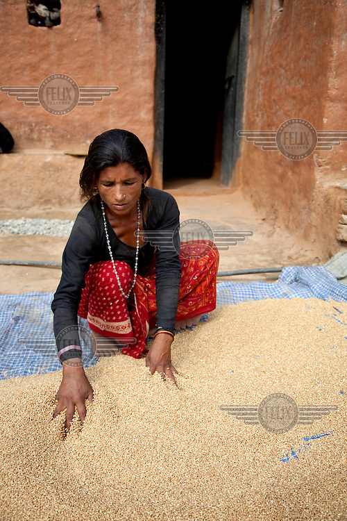 A woman spreads out rice to dry in the open air.