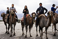 Suzanne Lee and Sanjit Das (2nd and 3rd from left) ride Bactrian camels with their friends while filming with the Sony ActionCam POV cameras during their motorcycle ride Across the Indian Himalayas on Royal Enfield motorcycles.