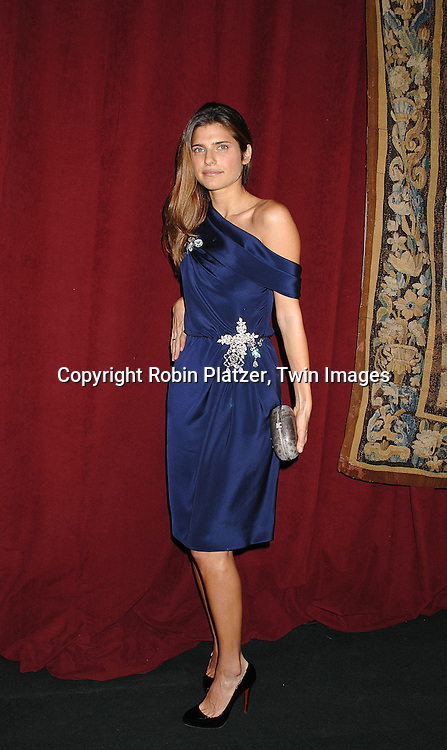 Lake Bell ..arriving at The 7th on Sale Black Tie Gala Dinner on ..November 15, 2007 at The 69th Regiment Armory in New York. The Fashion Industry's Battle Against HIV and AIDS..will benefit...Robin Platzer, Twin Images