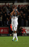 Pictured: Ashley Williams.<br /> Monday 16 September 2013<br /> Re: Barclay's Premier League, Swansea City FC v Liverpool at the Liberty Stadium, south Wales.