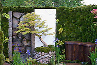 Zen meditation garden with stones, rocks boulders, wall of moss, Japanese maple Acer palmatum, planters container pots, deck landscaping, hidden and privacy private room outdoors