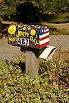 Have a Happy Day red, white, blue-painted mailbox with yellow happy faces