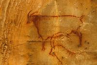 Europe/France/Midi-Pyrénées/46/Lot/Haut-Quercy/Payrignac: Les Grottes de Cougnac - Peintures rupestres d'animal préhistorique