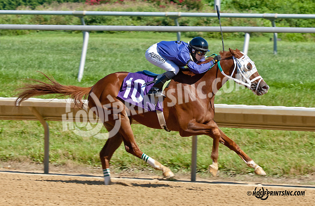 A. P. Cino winning at Delaware Park on 7/29/13