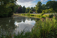 The Duck Pond in the village of Bishop Burton, East Riding of Yorkshire, United Kingdom on Thursday 2nd August 2018,