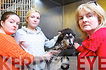 Vicki Kennelly from Shanakill and her dog Neeko who was attacked by another dog. Pictured at Hurley's Veterinary Hospital on Monday with her sister Amy and mother Eileen Flaherty.