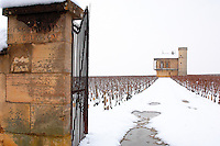 Clos de Vougeot in the snow.  France.