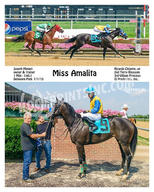 Miss Amalita winning at Delaware Park on 7/1/15