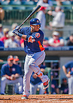 4 March 2016: Houston Astros catcher Roberto Pena in action during a Spring Training pre-season game against the St. Louis Cardinals at Osceola County Stadium in Kissimmee, Florida. The Astros defeated the Cardinals 6-3 in Grapefruit League play. Mandatory Credit: Ed Wolfstein Photo *** RAW (NEF) Image File Available ***