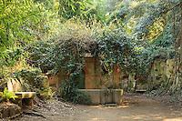 Le Domaine du Rayol:<br /> puit dans le jardin d'Asie subtropicale.
