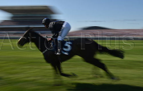 April 8th 2017, Aintree Racecourse, Liverpool, England; Randox Health Grand National Festival Horse racing, Grand National Day; Colla Pier ridden by Robert Dunne approaches the finishing post of the Doom Bar Maghull Novices Chase