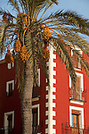 A date palm tree and an apartment building at the old quarter of Villajoyosa City. Alicante province, Valencian Community, Spain, Europa.