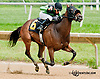 Favorite Patriot winning at Delaware Park on 7/27/13