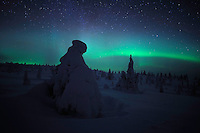 RIISITUNTURI NATIONAL PARK; FINLAND 2009; EUROPE; LANDSCAPE PHOTOGRAPHY; WINTER SCENERY; COLD; FEBRUARY; AURORA BOREALIS; NORTHERN LIGHTS; NIGHT PHOTOGRAPHY