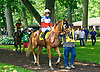 Believe in Athena with Melissa Boisgontier aboard before The International Ladies Fegentri race at Delaware Park on 6/13/17