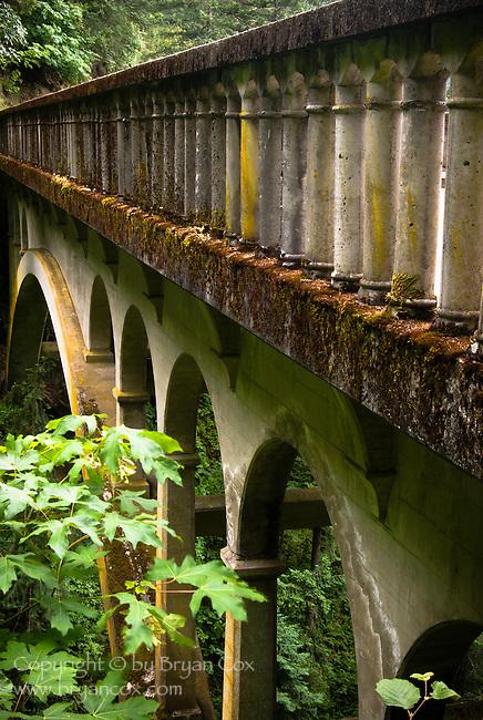 Bridge at Shepherd's Dell, Columbia River Gorge, Oregon