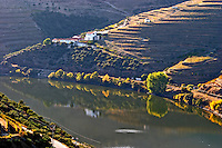 douro river and steep vineyards  baron offley forrester's new house douro portugal