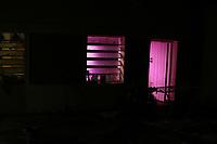 CAMPINAS, SP 12.03.2019-POLICIA- A Policia Militar da cidade de Campinas (SP) atraves de denuncia anonima localizou na noite desta segunda-feira (11) em uma residência na Rua Gonçalves Cesar, no Jd Guanabara uma estufa que servia para plantação de maconha. No local foram encontrados variados generos da planta e de diversos tamanhos, cerca de 2,5 mil reais e tambem haxixe. Foram detidos 4 pessoas e encaminhadas para a 1ª Delegacia Seccional. (Fotos: Denny Cesare/Codigo19)