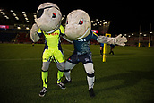 29th September 2017, AJ Bell Stadium, Salford, England; Aviva Premiership Rugby, Sale Sharks versus Gloucester; Sale mascots Sharky and Finlay pre match