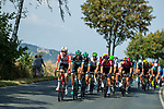 The peloton lined out during Stage 1 of the Deutschland Tour 2019, running 167km from Hannover to Halberstadt, Germany. 29th August 2019.<br /> Picture: ASO/Marcel Hilger | Cyclefile<br /> All photos usage must carry mandatory copyright credit (© Cyclefile | ASO/Marcel Hilger)