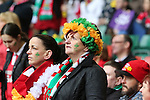 Patriotic Ireland rugby fans<br /> RBS 6 Nations<br /> Wales v Ireland<br /> Millennium Stadium<br /> 14.03.15<br /> &copy;Steve Pope - SPORTINGWALES