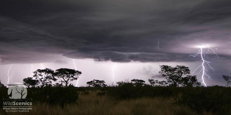 Thunder storm with lightning bolts at night over Kalahari pan