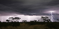 Thunder storm with lightning bolts at night over Kalahari pan