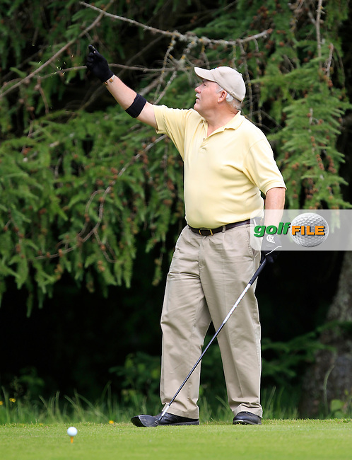 Richard Brooker (Skerries) on the 8th tee during Round 1 of the Leinster Seniors Amateur Open Championship at Enniscorthy Golf Club on Tuesday 23rd June 2015.<br /> Picture:  Thos Caffrey / www.golffile.ie