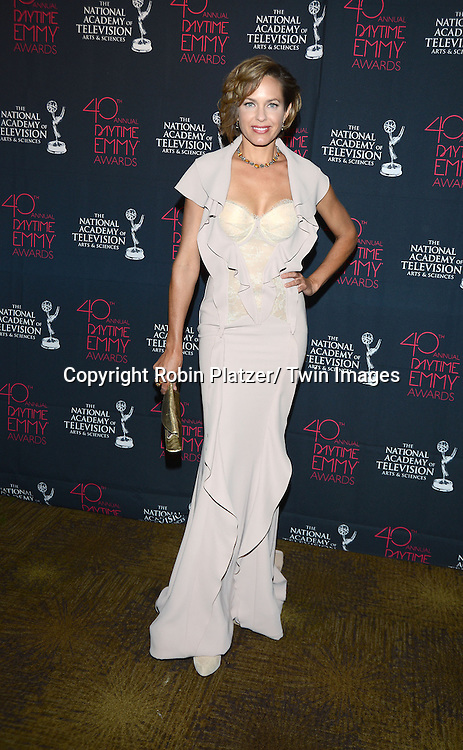 Arianne Zucker in attends the 40th Annual Daytime Creative Arts Emmy Awards on June 14, 2013 at the Westin Bonaventure Hotel in Los Angeles, California.
