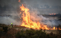 2018 11 20 Fire in Gower, Wales, UK
