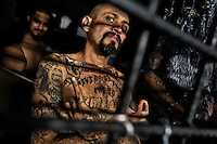 "A local leader of the Mara Salvatrucha gang (MS-13) shows a hand sign, representing his gang, in a cell at the detention center in San Salvador, El Salvador, 20 February 2014. Although the country's two major gangs reached a truce in 2012, the police holding cells currently house more than 3000 inmates, five times more than the official built capacity. Partly because the ordinary Mara gang members did not break with their criminal activities (extortion, street-level distribution of drugs, etc.), partly because Salvadorean police still applies controversial anti-gang law which allows to detain almost anyone for ""suspicion of gang membership"". Accused young men are held in police detention centers where up to 25 inmates may share a cell of five-by-five metres. Here, in the dark overcrowded cages, under harsh and life-threatening conditions, suspected gang members wait long months, sometimes years, for trial or for to be transported to a regular prison."
