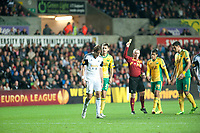 Thursday 24 October 2013  <br /> Pictured: Referee Kristinn Jakobsson dishes out a yellow card<br /> Re:UEFA Europa League, Swansea City FC vs Kuban Krasnodar,  at the Liberty Staduim Swansea