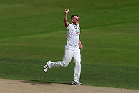Jamie Porter of Essex with an appeal for a wicket during Nottinghamshire CCC vs Essex CCC, Specsavers County Championship Division 1 Cricket at Trent Bridge on 12th September 2018