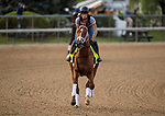 LOUISVILLE, KY - MAY 02: Vino Rosso gallops in preperation for the Kentucky Derby at Churchill Downs on May 2, 2018 in Louisville, Kentucky. (Photo by Alex Evers/Eclipse Sportswire/Getty Images)