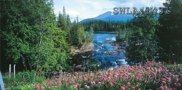 Carl, LANDSCAPES, panoramic, photos(SWLA1431,#L#)