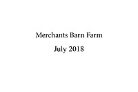 Merchants Barn Farm - July 2018