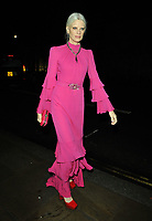 LONDON, ENGLAND - NOVEMBER 27: Kristen McMenamy at the Royal Osteoporosis Gala Dinner, Banqueting House, Whitehall on Wednesday 27 November 2019 in London, England, UK. <br /> CAP/CAN<br /> ©CAN/Capital Pictures
