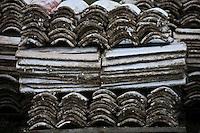 Europe/France/Aquitaine/33/Gironde/Bassin d'Arcachon/Gujan-Mestras: Port Ostréicole -  détail des tuiles couvertes de chaux qui servent de collecteur pour le naissaim, c'est à dire les petites huïtres