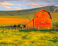 Barn in Summer, Madison River Valley, Montana