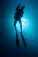 One scuba diver underwater near the Baa Atoll, Maldive Islands.