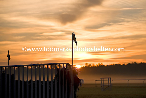 Sunrise over Springdale Race Course.