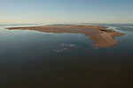 Aerial - The flooded Lake Eyre with Ibis Island full of breeding water birds banded stilts and/or red-necked avocets.