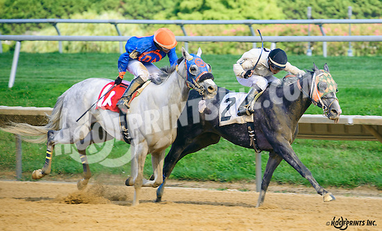 Mr. Beer Goggles winning at Delaware Park on 8/4/16