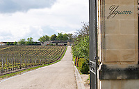 vineyard gate post chateau d'yquem sauternes bordeaux france