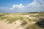 The Dunes between Scheveningen and Katwijk Holland