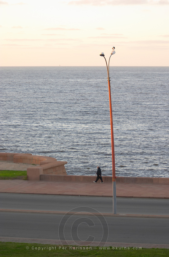 Coast line with a man walking at dawn along a street. A lamp post with a lone single sea gull against the horizon. Montevideo, Uruguay, South America