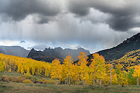Uncompahgre National Forest, Colorado:<br /> Rain clouds over peaks of the Cimarron Range and fall colored aspen groves