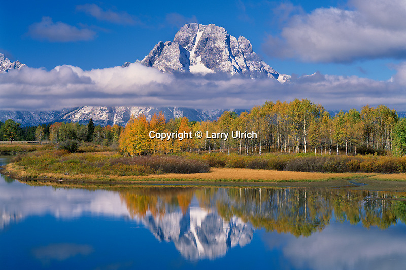 Aspens and Mt. Moran from Oxbow Bend<br /> Snake River Valley<br /> Grand Teton National Park<br /> Rocky Mountains,  Wyoming