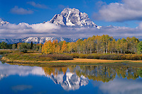 Aspens and Mt. Moran from Oxbow Bend<br />