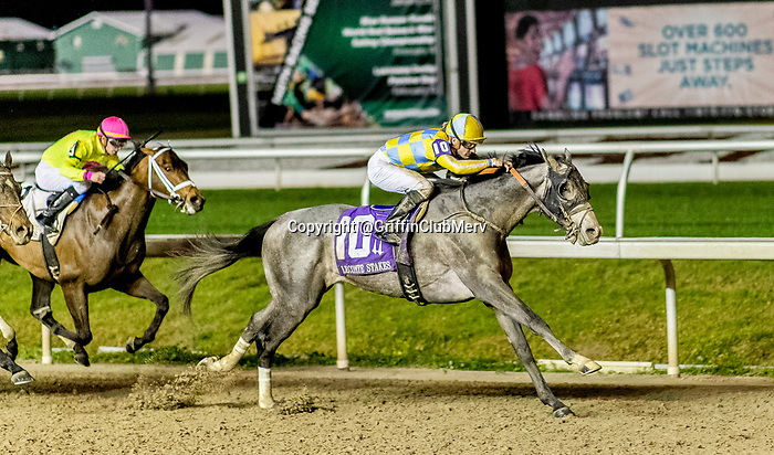 Enforceable with jockey Julien Leparoux pulls away to win the 76th running of the $200,000 Grade III Lecomte Stakes at Fair Grounds. photo by Keith P. Luke/Eclipse Sportswire